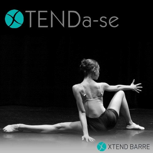 Série Motivacional Ballet